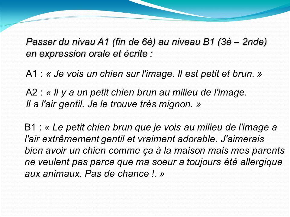 Passer du nivau A1 (fin de 6è) au niveau B1 (3è – 2nde) en expression orale et écrite : A1 : « Je vois un chien sur l image.