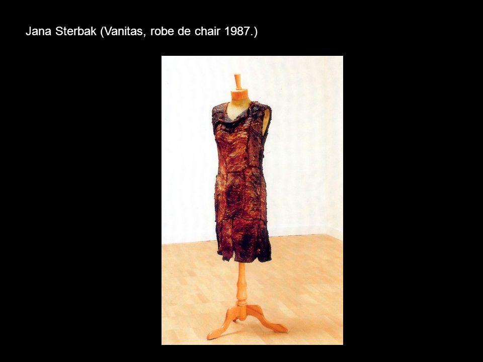 Jana Sterbak (Vanitas, robe de chair 1987.)
