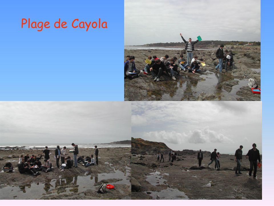 Plage de Cayola