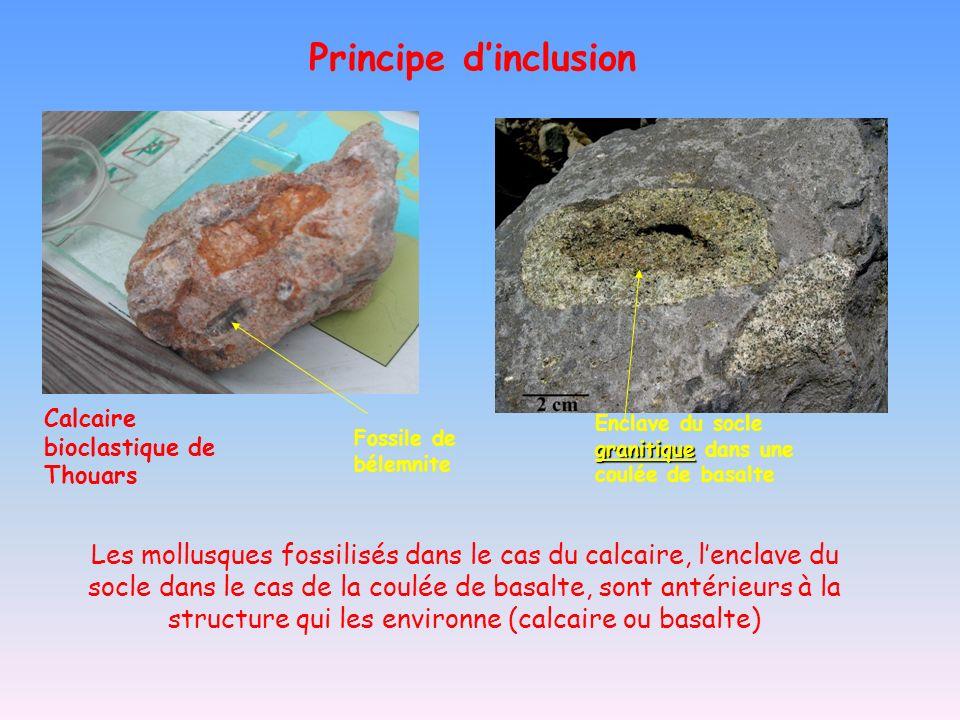 Calcaire bioclastique de Thouars granitique Enclave du socle granitique dans une coulée de basalte Les mollusques fossilisés dans le cas du calcaire,