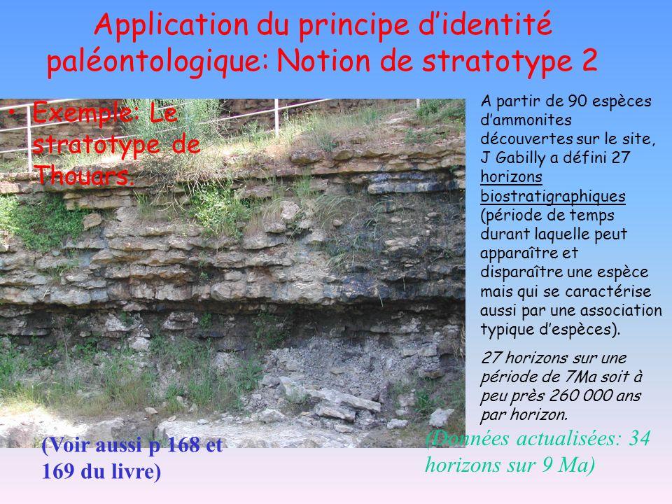 Application du principe didentité paléontologique: Notion de stratotype 2 Exemple: Le stratotype de Thouars. A partir de 90 espèces dammonites découve