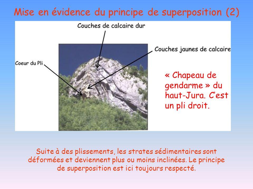 Mise en évidence du principe de superposition (2) Suite à des plissements, les strates sédimentaires sont déformées et deviennent plus ou moins inclin