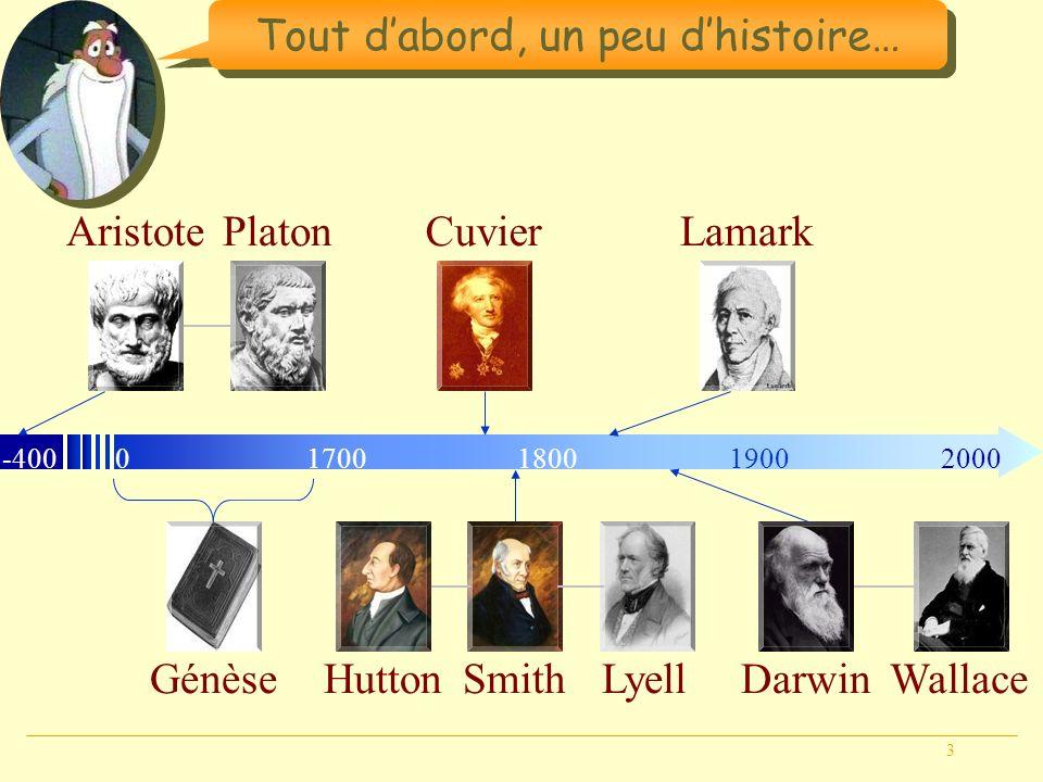 3 Tout dabord, un peu dhistoire… Génèse -40001800190020001700 AristotePlatonCuvier HuttonLyellSmith Lamark DarwinWallace