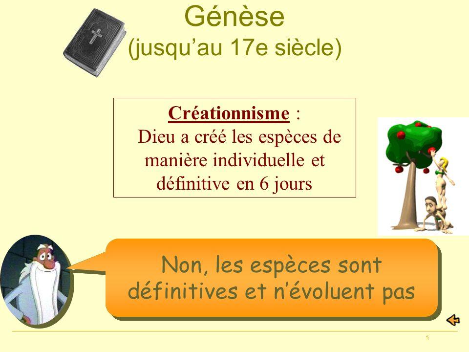 5 Et maintenant, pensez-vous quon peut parler dévolution? Génèse (jusquau 17e siècle) Créationnisme : Dieu a créé les espèces de manière individuelle