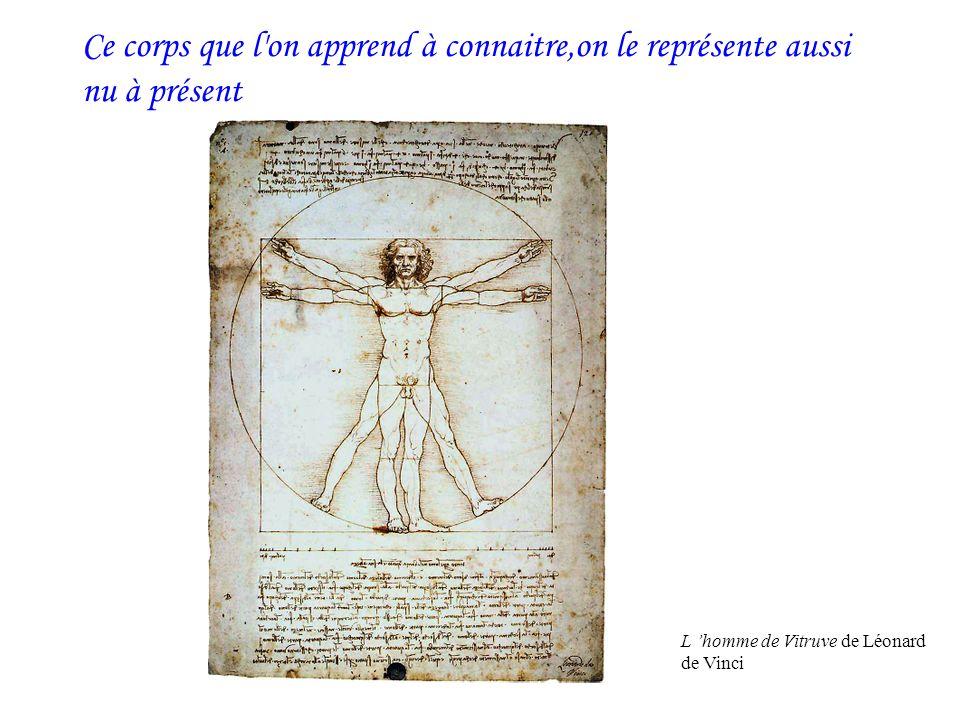 Ce corps que l'on apprend à connaitre,on le représente aussi nu à présent L homme de Vitruve de Léonard de Vinci