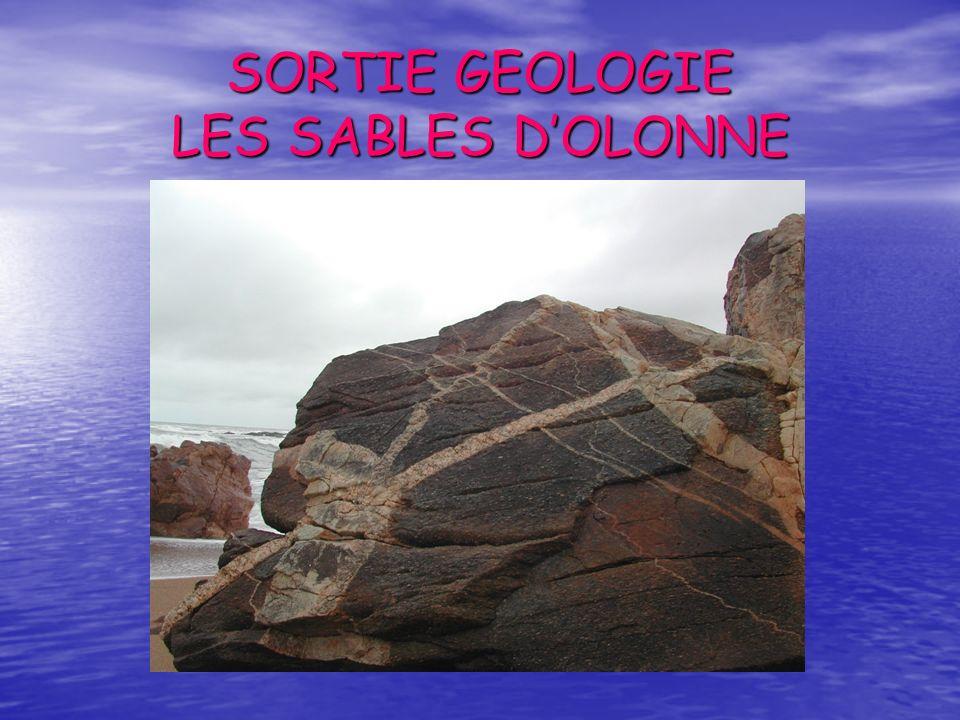 SORTIE GEOLOGIE LES SABLES DOLONNE