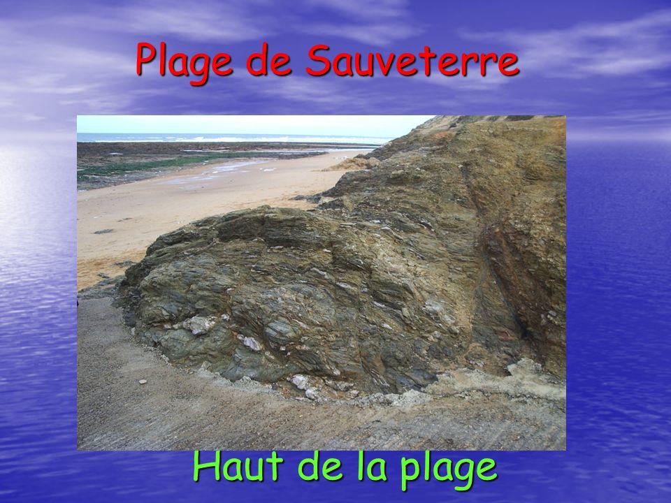 Haut de la plage Plage de Sauveterre