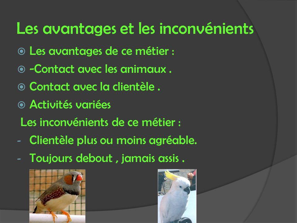 Les avantages et les inconvénients Les avantages de ce métier : -Contact avec les animaux. Contact avec la clientèle. Activités variées Les inconvénie