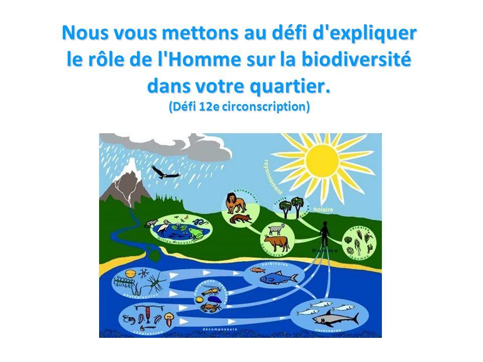 Nous vous mettons au défi d expliquer le rôle de l Homme sur la biodiversité dans votre quartier.