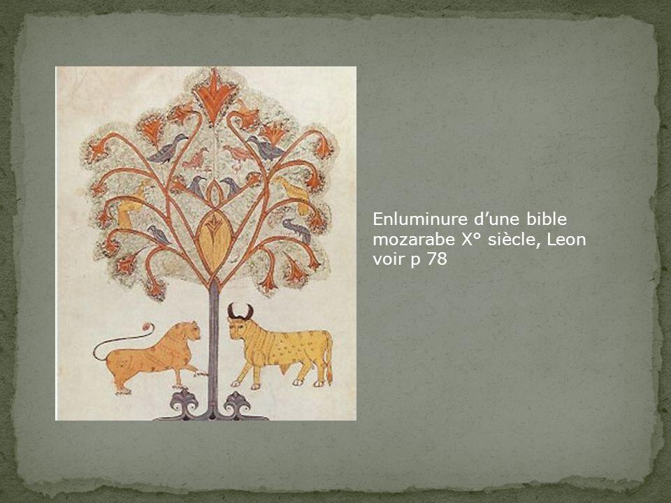 Enluminure dune bible mozarabe X° siècle, Leon voir p 78