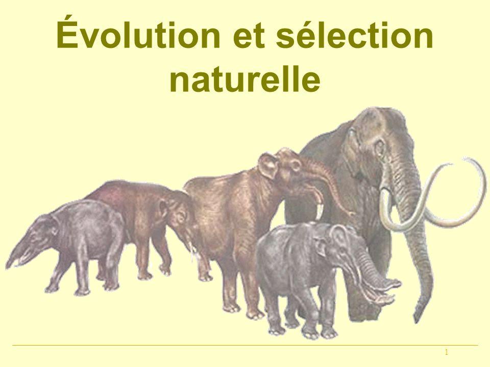 1 Évolution et sélection naturelle