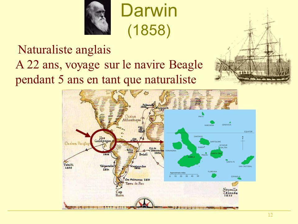 12 Darwin (1858) Naturaliste anglais A 22 ans, voyage sur le navire Beagle pendant 5 ans en tant que naturaliste