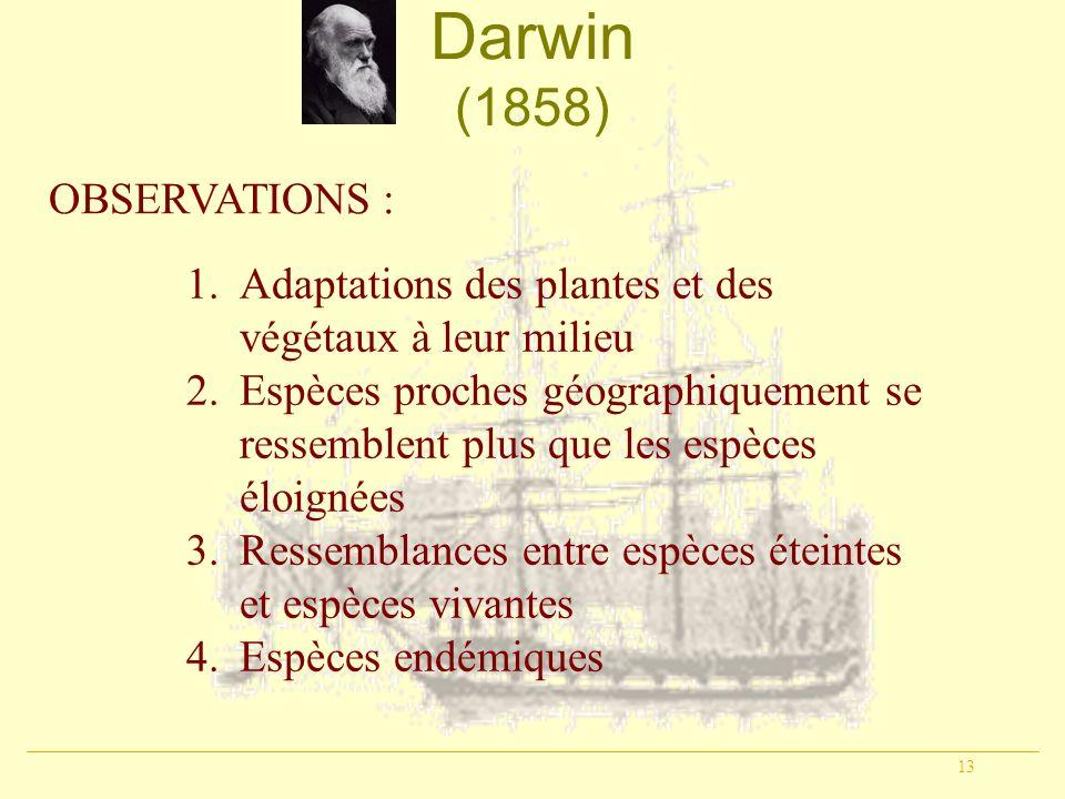 13 Darwin (1858) OBSERVATIONS : 1.Adaptations des plantes et des végétaux à leur milieu 2.Espèces proches géographiquement se ressemblent plus que les