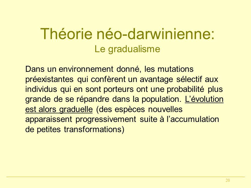 20 Théorie néo-darwinienne: Le gradualisme Dans un environnement donné, les mutations préexistantes qui confèrent un avantage sélectif aux individus q