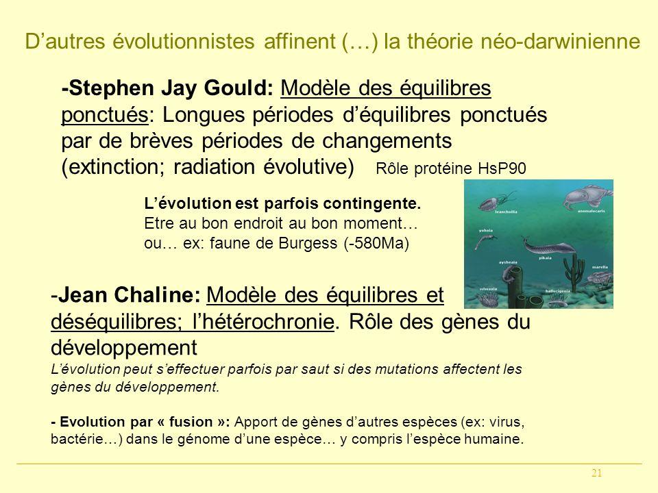 21 Dautres évolutionnistes affinent (…) la théorie néo-darwinienne -Jean Chaline: Modèle des équilibres et déséquilibres; lhétérochronie. Rôle des gèn