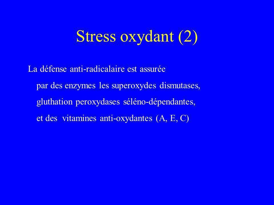 Stress oxydant (2) La défense anti-radicalaire est assurée par des enzymes les superoxydes dismutases, gluthation peroxydases séléno-dépendantes, et d