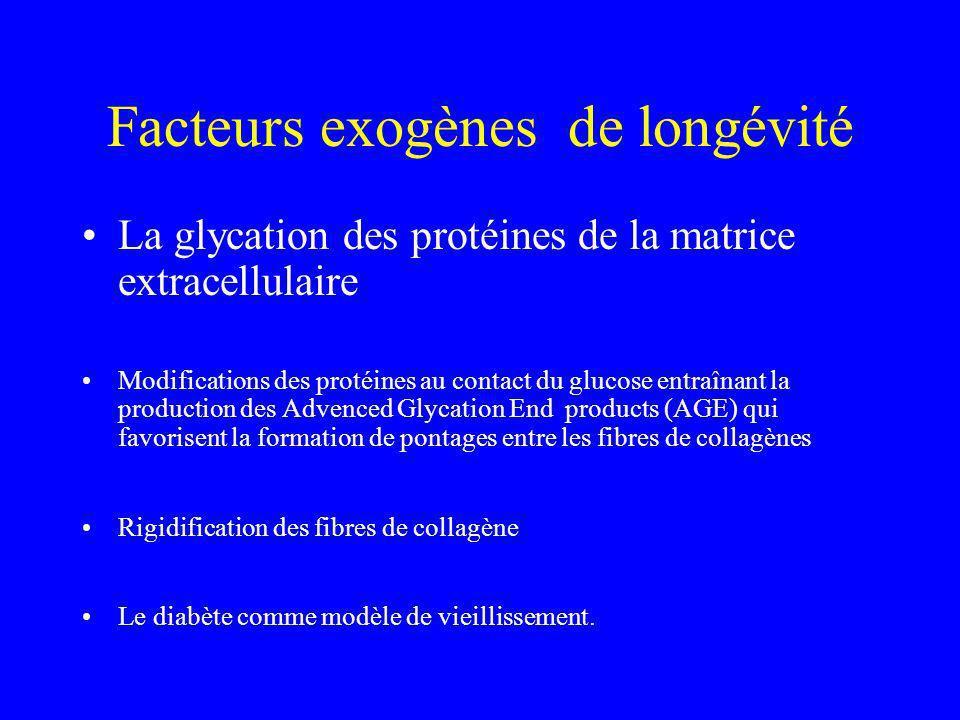 Facteurs exogènes de longévité La glycation des protéines de la matrice extracellulaire Modifications des protéines au contact du glucose entraînant l