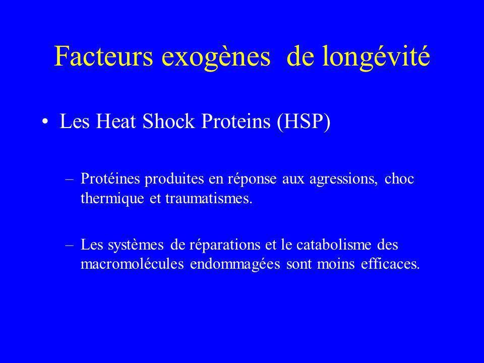 Facteurs exogènes de longévité Les Heat Shock Proteins (HSP) –Protéines produites en réponse aux agressions, choc thermique et traumatismes. –Les syst