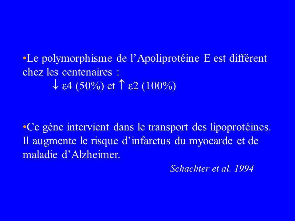 Le polymorphisme de lApoliprotéine E est différent chez les centenaires : 4 (50%) et 2 (100%) Ce gène intervient dans le transport des lipoprotéines.