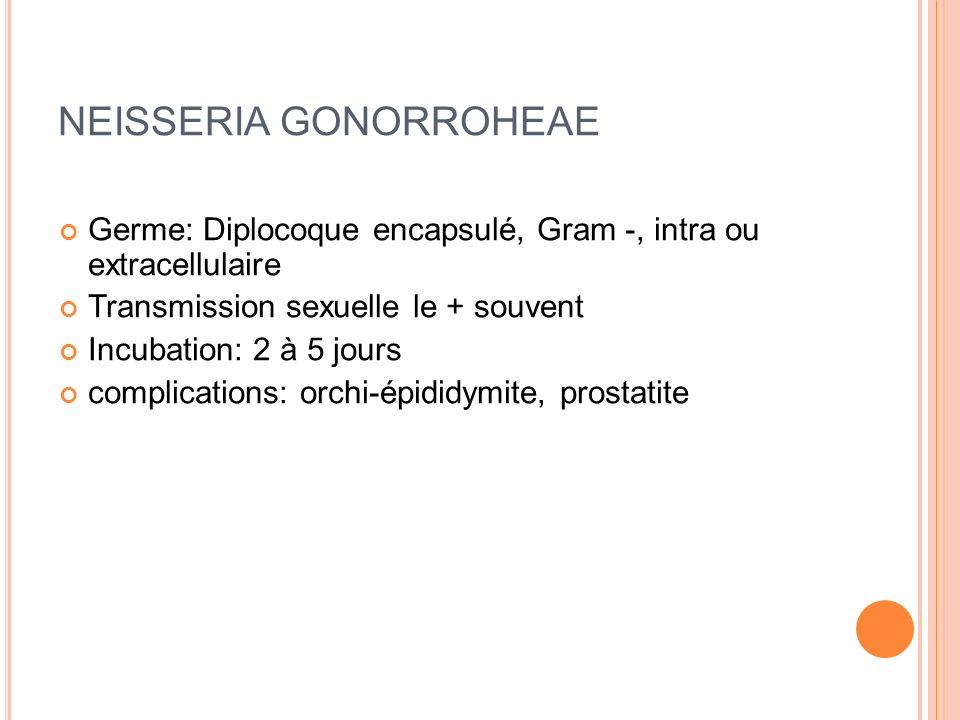 EXAMENS PARACLINIQUE Ecouvillonnage Premier jet durine recherche CT / PCR ECBU Hémocultures Bilan IST Echographie testiculaire