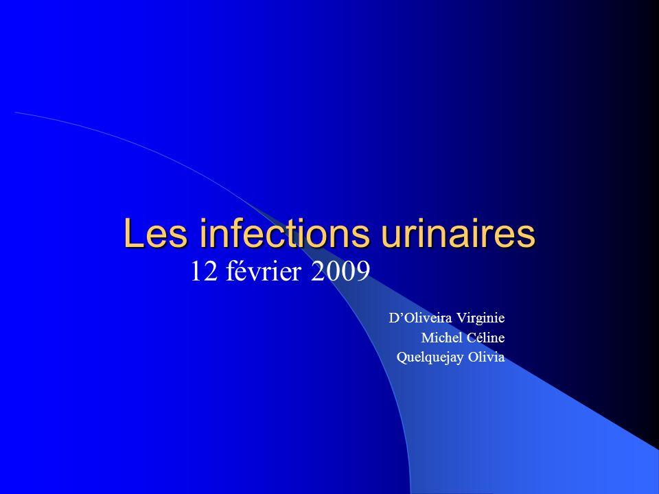 Les infections urinaires 12 février 2009 DOliveira Virginie Michel Céline Quelquejay Olivia