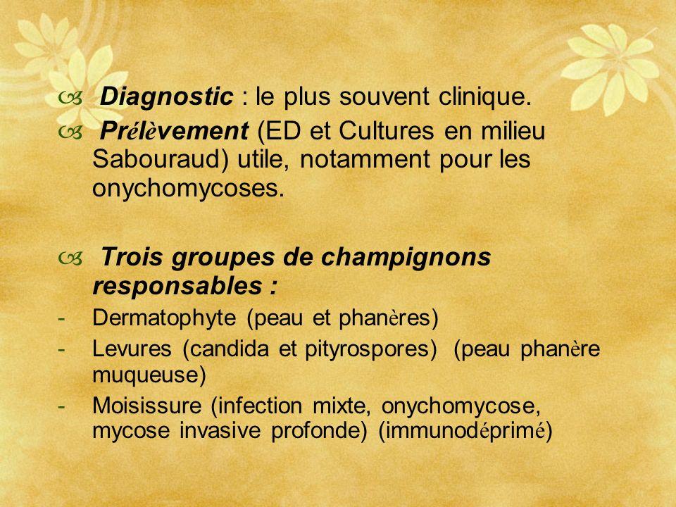 Diagnostic : le plus souvent clinique. Pr é l è vement (ED et Cultures en milieu Sabouraud) utile, notamment pour les onychomycoses. Trois groupes de