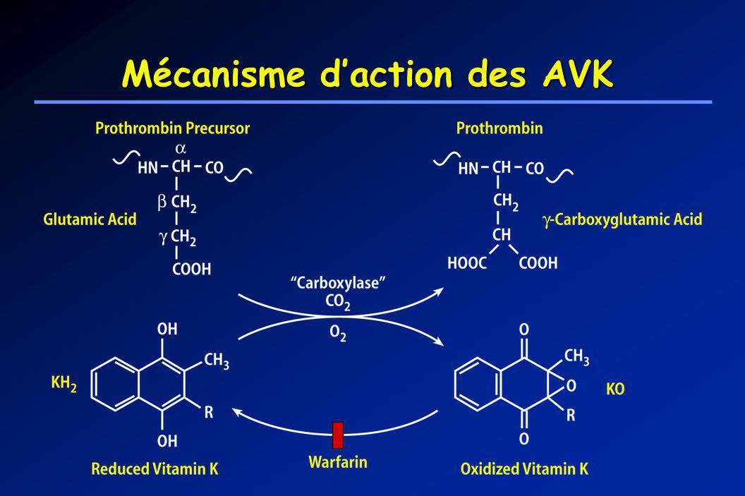 Surdosage sous AVK : CAT INR<5, pas de saignement Sauter la prochaine prise ou la posologie (ou ne rien changer si INR peu élevé) (Gr2C) INR 5-9, pas de saignement Sauter la prochaine prise, surveiller lINR (réduction en 24h) puis reprendre lAVK à dose plus faible quand lINR est revenu dans la zone cible Eventuellement 1 à 2 mg vit K per os si risque hémorragique élevé (Gr 2C) INR>9, pas de saignement Arrêt de lAVK 5 mg vit K per os, surveiller lINR (réduction en 24-48h) redonner de la Vit K si nécessaire +surveillance puis reprendre lAVK à dose plus faible quand lINR est revenu dans la zone cible (Gr 2C) Saignement majeur Arrêt de lAVK Vitamine K 10 mg IV lente Renouveler éventuellement la vitamine K Eventuellement PFC (Grade 1C)