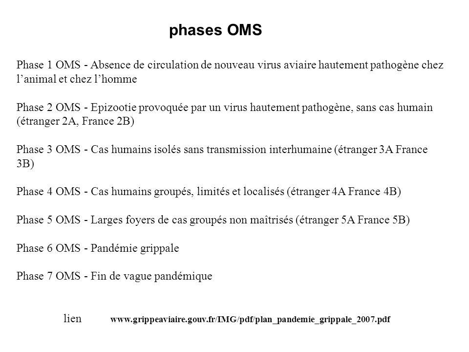 Phase 1 OMS - Absence de circulation de nouveau virus aviaire hautement pathogène chez lanimal et chez lhomme Phase 2 OMS - Epizootie provoquée par un