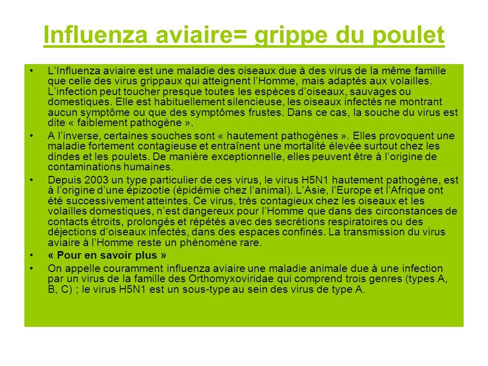 Influenza aviaire= grippe du poulet LInfluenza aviaire est une maladie des oiseaux due à des virus de la même famille que celle des virus grippaux qui