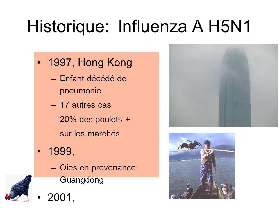 Historique: Influenza A H5N1 1997, Hong Kong –Enfant décédé de pneumonie –17 autres cas –20% des poulets + sur les marchés 1999, –Oies en provenance G