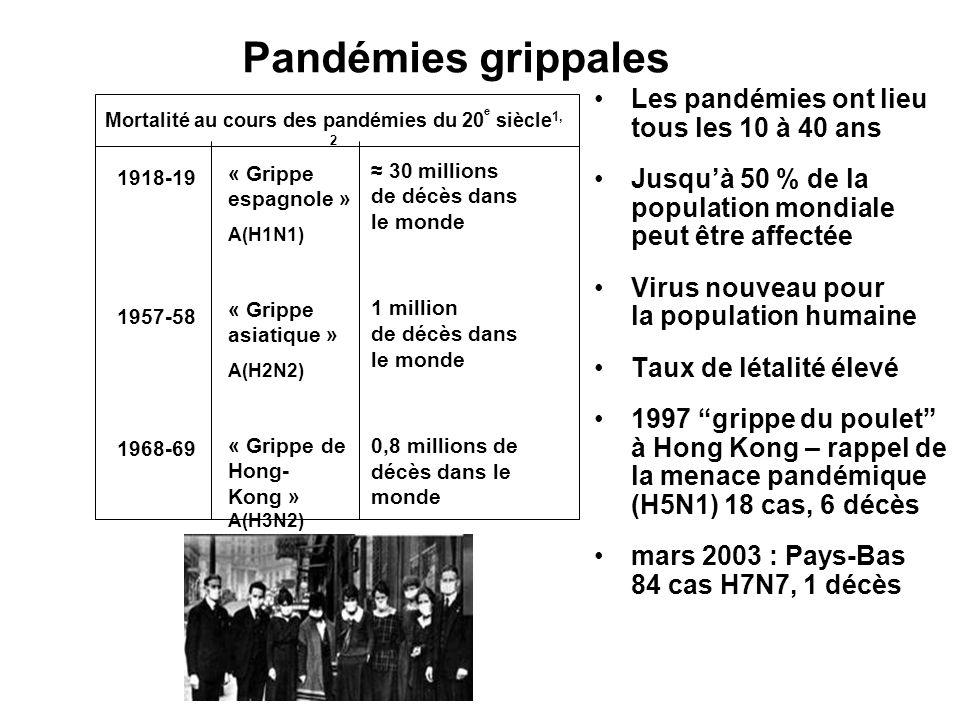 « lépidémie la plus considérable et la plus rapide de lhistoire de lhumanité » C.Hannoun En France : 120 000 morts Aux Etats Unis : 400 000 morts, Age moyen 33 ans (Vs 50 à 60 ans) Taux dattaque élevé : 40% Mortalité 3% Fréquence des formes fulminantes : jeunes adultes, mortalité X 20 Séquelles plus fréquentes La grippe espagnole (1918-1919)