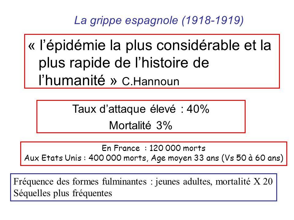 « lépidémie la plus considérable et la plus rapide de lhistoire de lhumanité » C.Hannoun En France : 120 000 morts Aux Etats Unis : 400 000 morts, Age