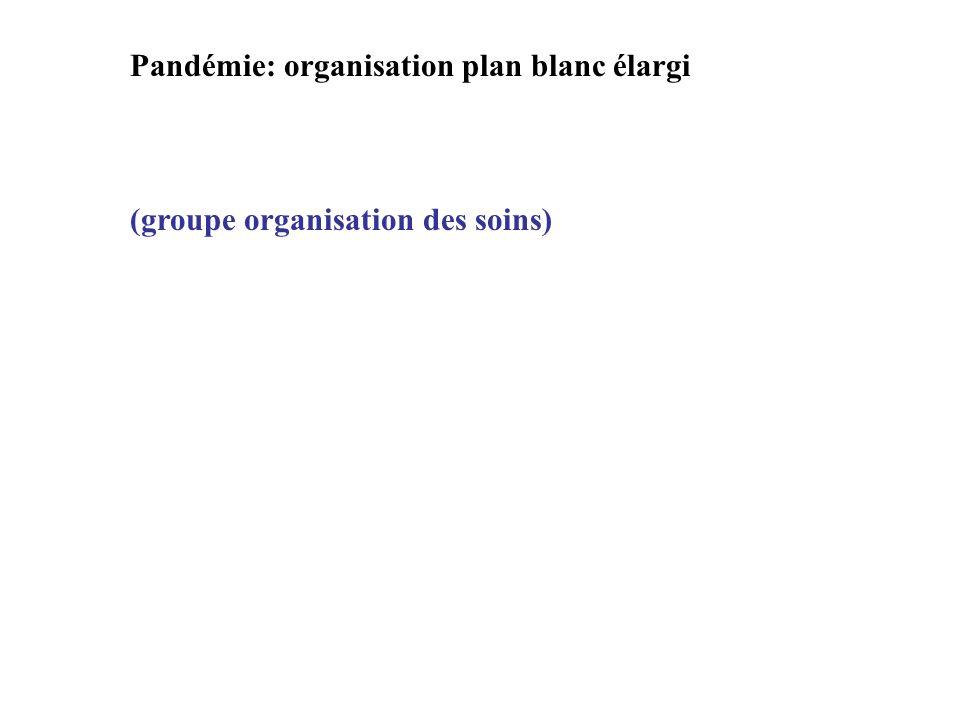 Pandémie: organisation plan blanc élargi (groupe organisation des soins)