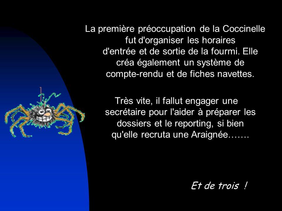 La première préoccupation de la Coccinelle fut d organiser les horaires d entrée et de sortie de la fourmi.