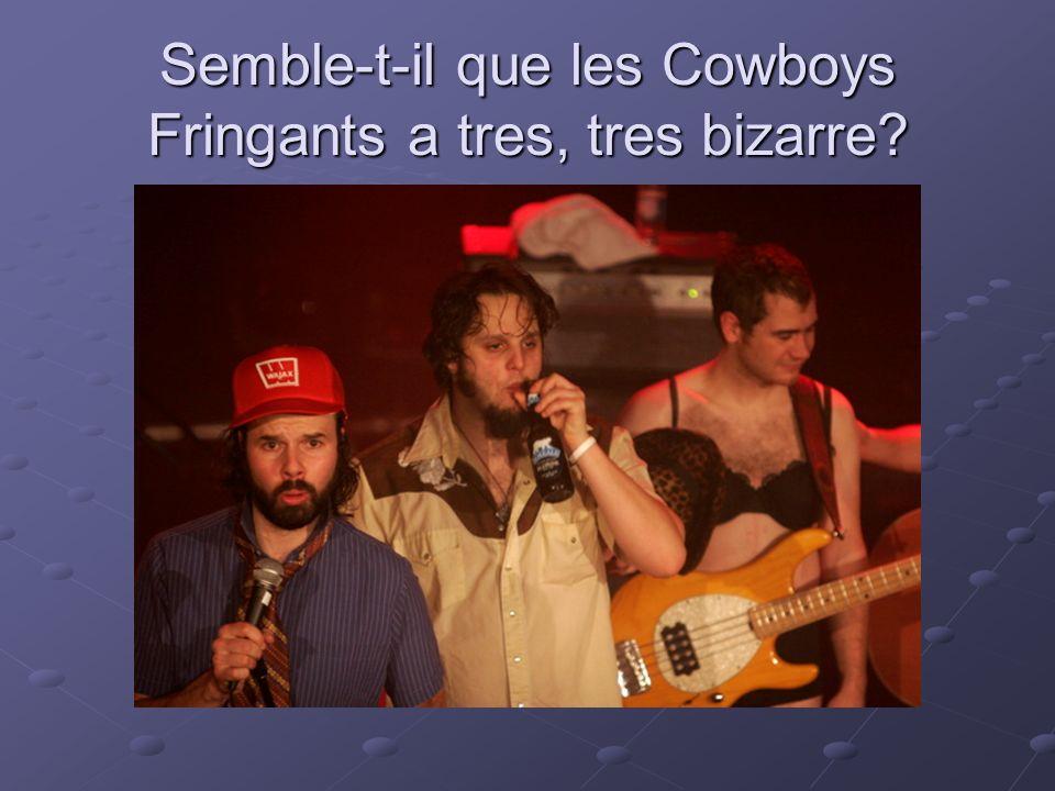 Semble-t-il que les Cowboys Fringants a tres, tres bizarre?