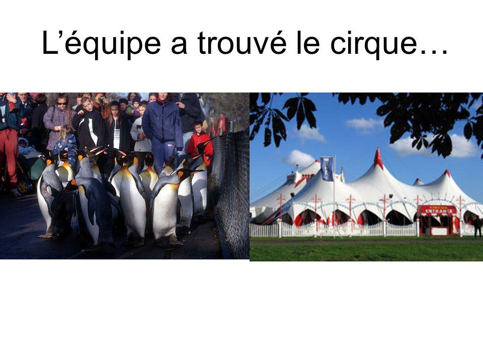 Léquipe a trouvé le cirque…