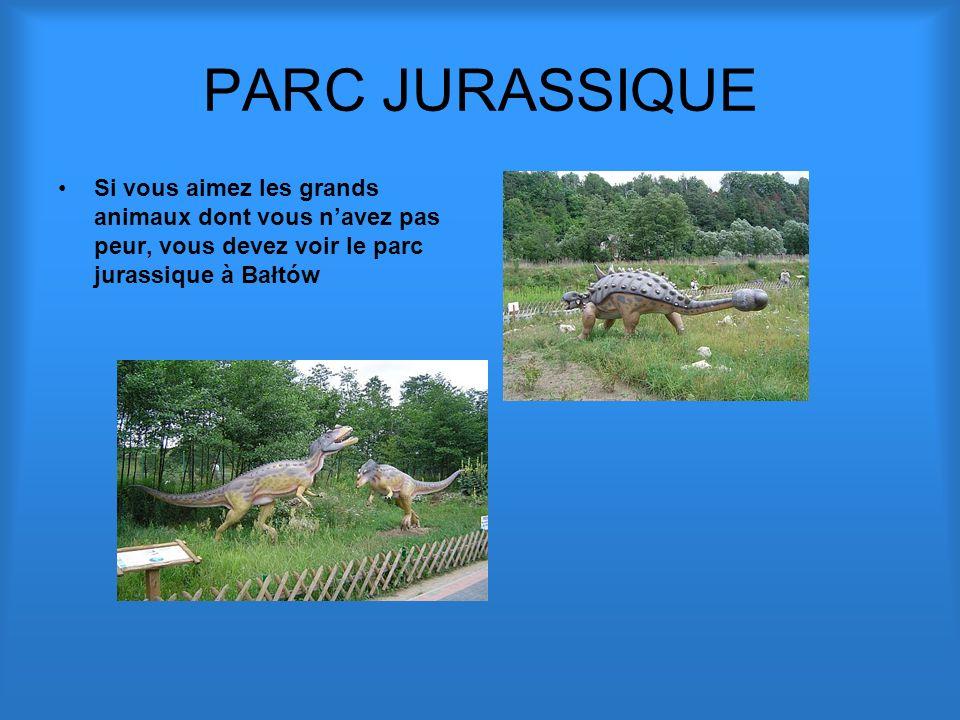 PARC JURASSIQUE Si vous aimez les grands animaux dont vous navez pas peur, vous devez voir le parc jurassique à Bałtów