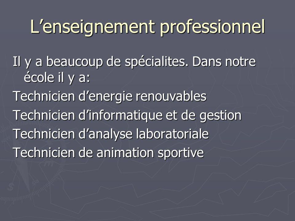 Lenseignement professionnel Il y a beaucoup de spécialites. Dans notre école il y a: Technicien denergie renouvables Technicien dinformatique et de ge