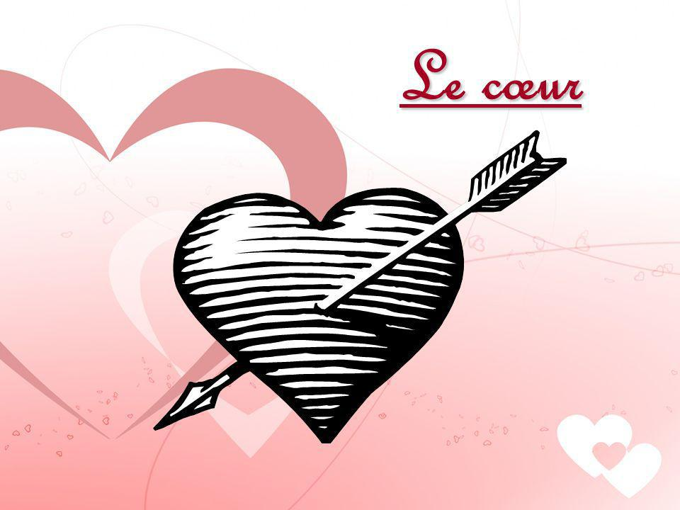 Le cœur