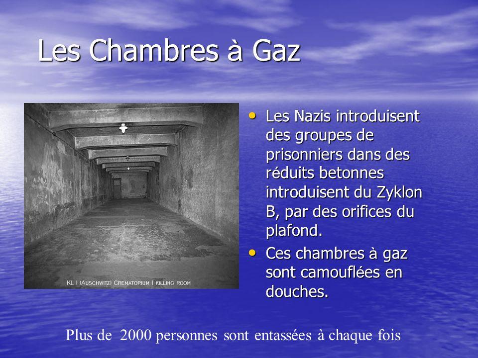 Les Chambres à Gaz Les Nazis introduisent des groupes de prisonniers dans des réduits betonnes introduisent du Zyklon B, par des orifices du plafond.
