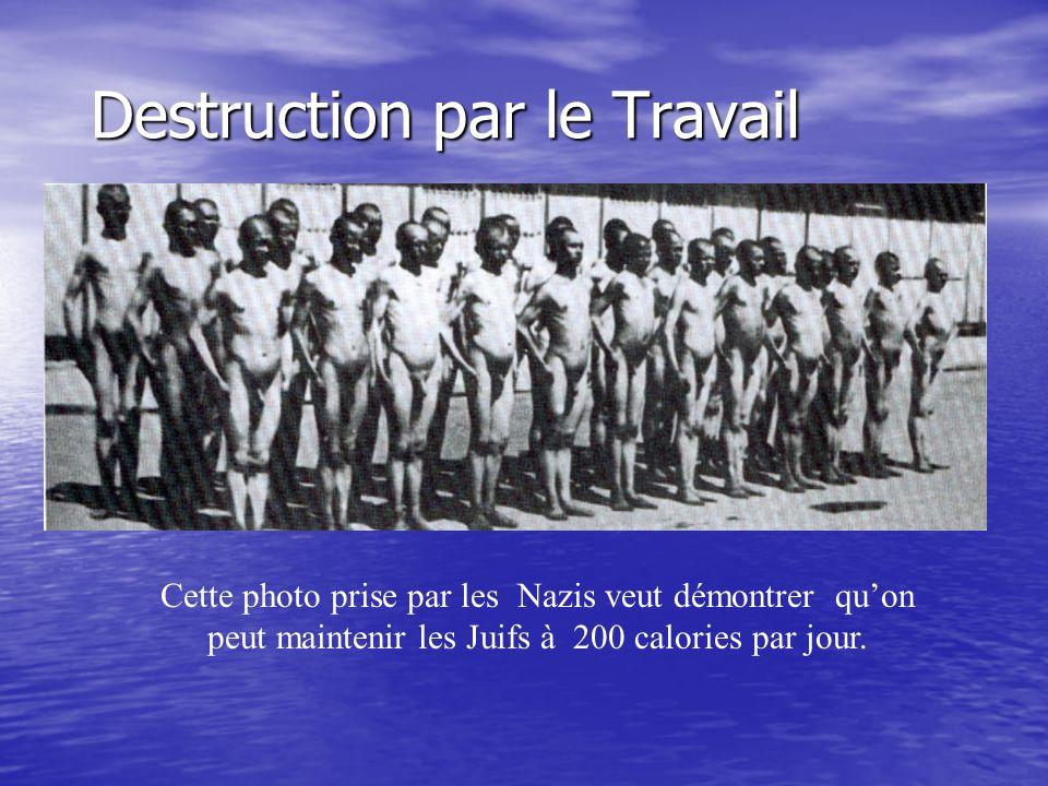 Destruction par le Travail Cette photo prise par les Nazis veut démontrer quon peut maintenir les Juifs à 200 calories par jour.