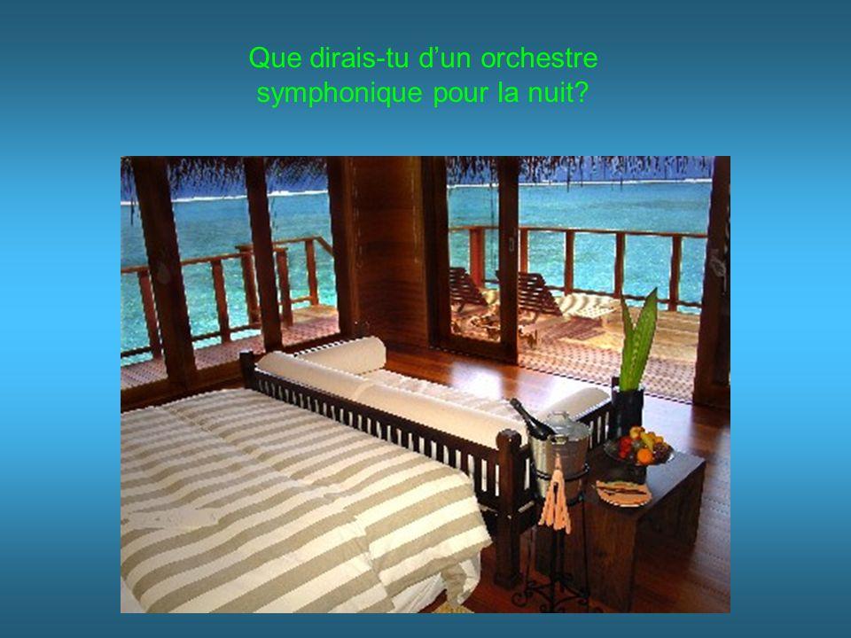 Que dirais-tu dun orchestre symphonique pour la nuit?