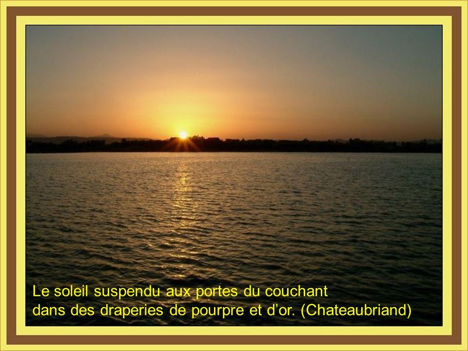 Celui qui ne se lève pas avec le soleil ne jouit pas de la journée.(M. De. Cervantes)