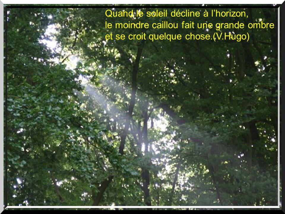 Quand le soleil décline à lhorizon, le moindre caillou fait une grande ombre et se croit quelque chose.(V.Hugo)