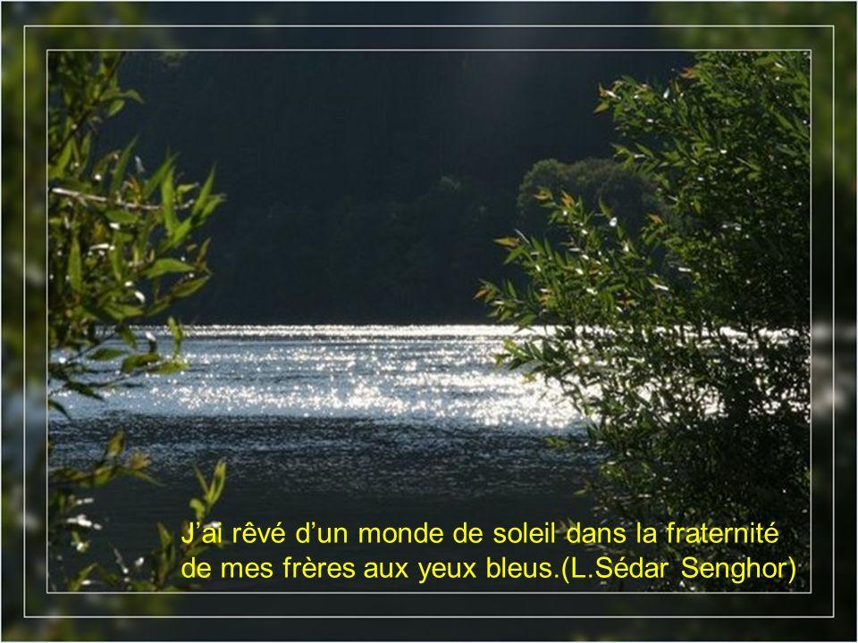 Jai rêvé dun monde de soleil dans la fraternité de mes frères aux yeux bleus.(L.Sédar Senghor)