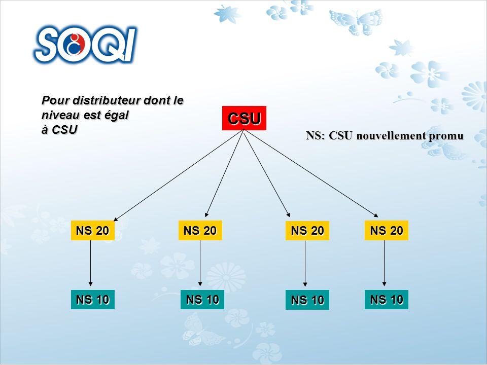 Pour distributeur dont le niveau est égal à CSU NS: CSU nouvellement promu CSU NS 20 NS 10 NS 20 NS 10 NS 20 NS 10