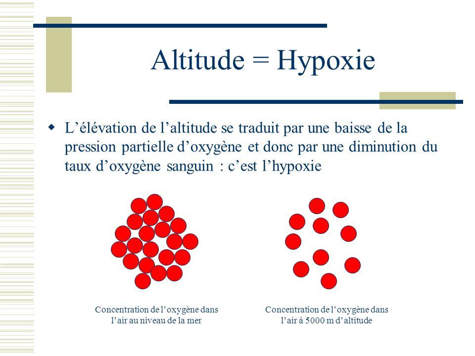 Altitude = Hypoxie Lélévation de laltitude se traduit par une baisse de la pression partielle doxygène et donc par une diminution du taux doxygène sanguin : cest lhypoxie Concentration de loxygène dans lair au niveau de la mer Concentration de loxygène dans lair à 5000 m daltitude