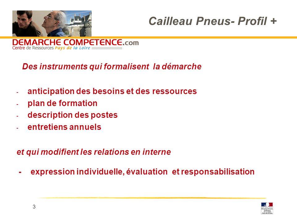 3 Cailleau Pneus- Profil + - anticipation des besoins et des ressources - plan de formation - description des postes - entretiens annuels et qui modif