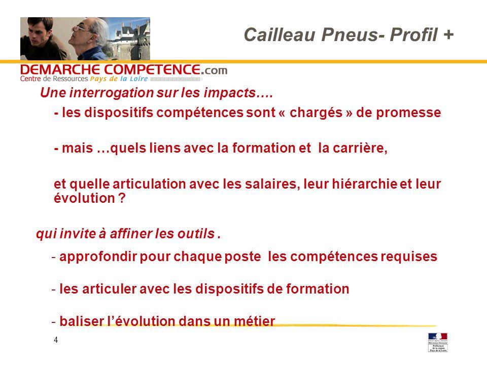4 Cailleau Pneus- Profil + - les dispositifs compétences sont « chargés » de promesse - mais …quels liens avec la formation et la carrière, et quelle