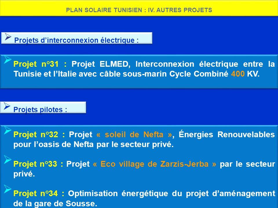 PLAN SOLAIRE TUNISIEN : IV. AUTRES PROJETS Projet n°32 : Projet « soleil de Nefta », Énergies Renouvelables pour loasis de Nefta par le secteur privé.